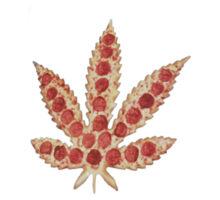 pizza-marijuana-leaf